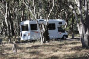 Motorhome Hire or Caravan Rentals?