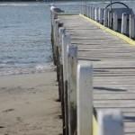 Fishing with your Motorhome Rental Australia
