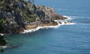 Eden is a lovely coastal area to visit when travelling in your camper from Sydney to Melbourne
