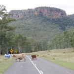 Travelling from Brisbane in a motorhome