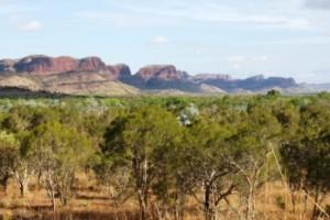 Eastern Kimberleys