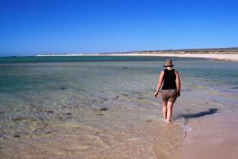 Ningaloo Reef in Western Australia