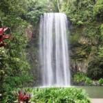stunning_millaa millaaa_falls