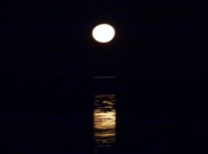 staircase_to_the_moon_broome