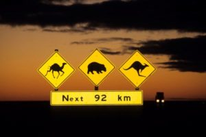 Road signs along the Nullarbor