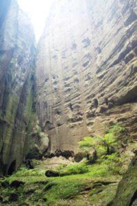 Amphitheatre Carnarvon Gorge