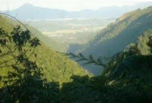 Kuranda views queensland