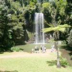 Milla Milla Falls Atherton Tablelands