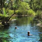 Thermal Springs Mataranka NT