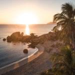 queensland coastline palm trees sea sunset sunrise
