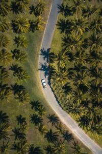 campervan hire queensland roads palm trees birdseye view