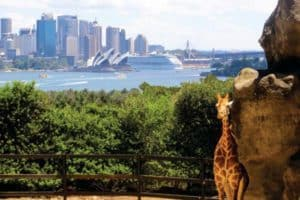 Taronga Zoo, Sydney, NSW
