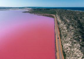 Hutt Lagoon Pink Lake WA